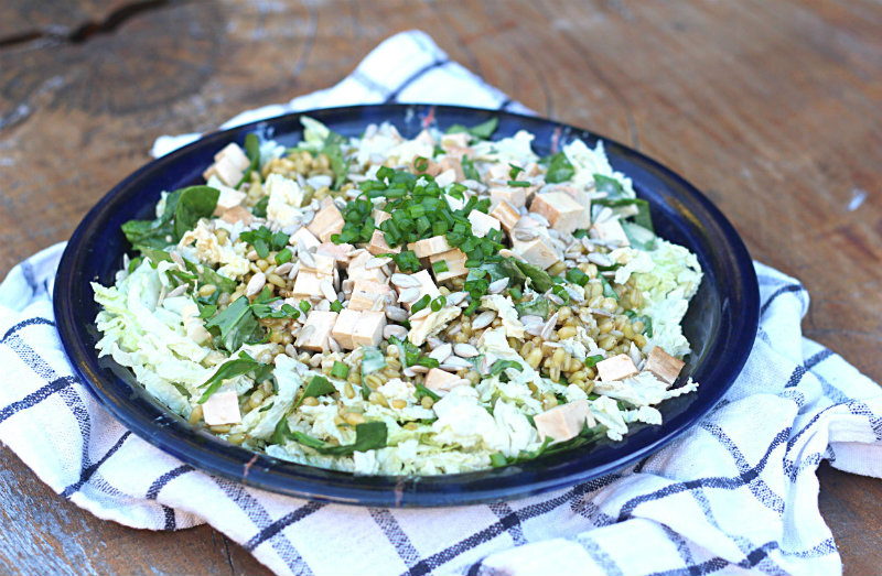 Cabbage and freekeh salad - to her core