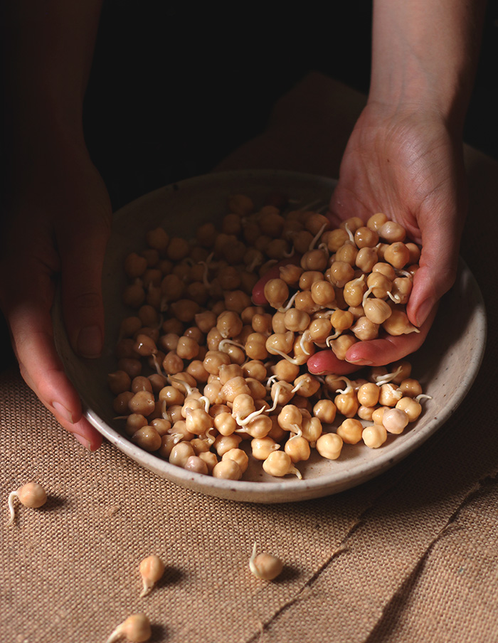 sprouted chickpeas - to her core