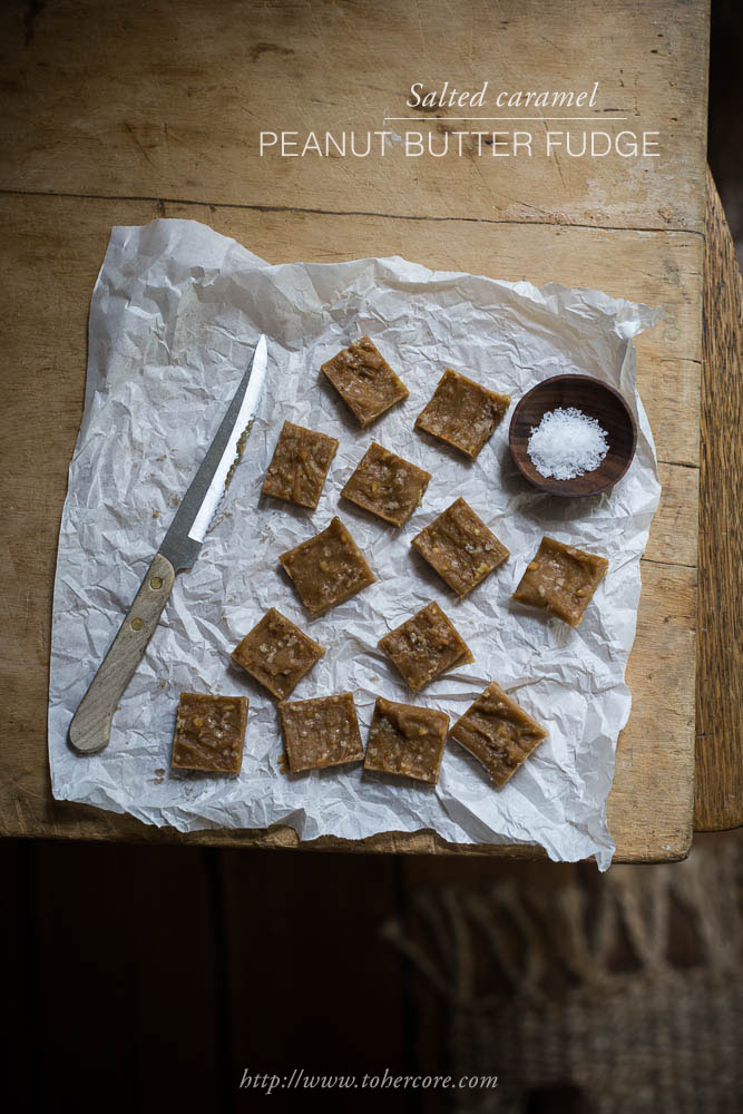 salted-peanut-butter-fudge-to-her-core-txt